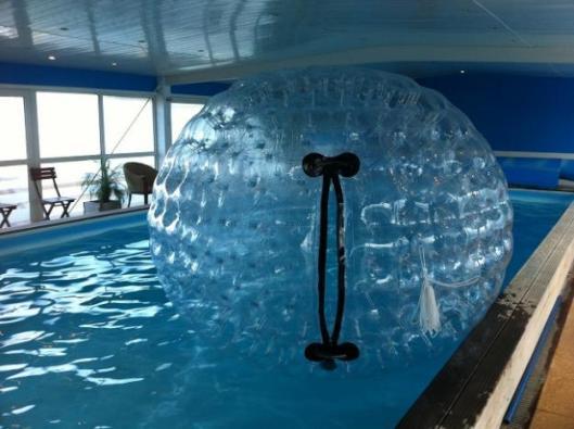 1326650314_300348839_1-Photos-de--Location-Water-Ball